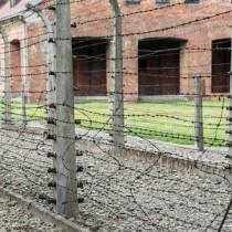 Auschwitz_03.jpg