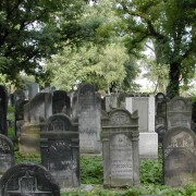 The Jewish cemetery in Czeladź